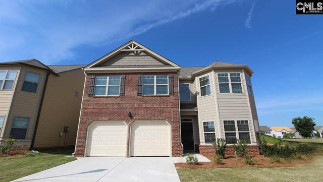 144 Village View Way, Lexington, SC 29072 (MLS #467090) :: The Olivia Cooley Group at Keller Williams Realty