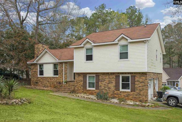 101 Baden Court, Columbia, SC 29212 (MLS #467167) :: The Olivia Cooley Group at Keller Williams Realty