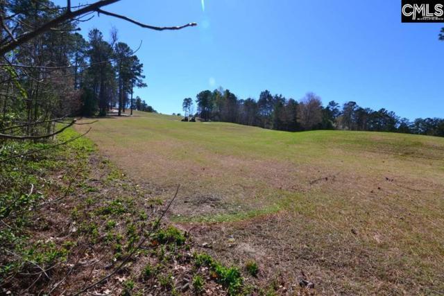 177 Peppermint Lane #85, Blythewood, SC 29016 (MLS #467260) :: Home Advantage Realty, LLC