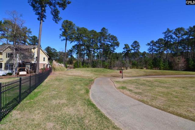 169 Peppermint Lane, Blythewood, SC 29016 (MLS #467261) :: Home Advantage Realty, LLC