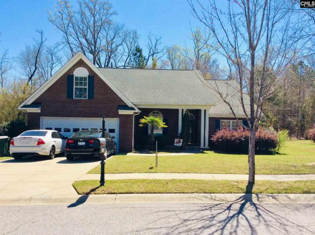 212 Blue Mountain, Irmo, SC 29063 (MLS #467411) :: EXIT Real Estate Consultants