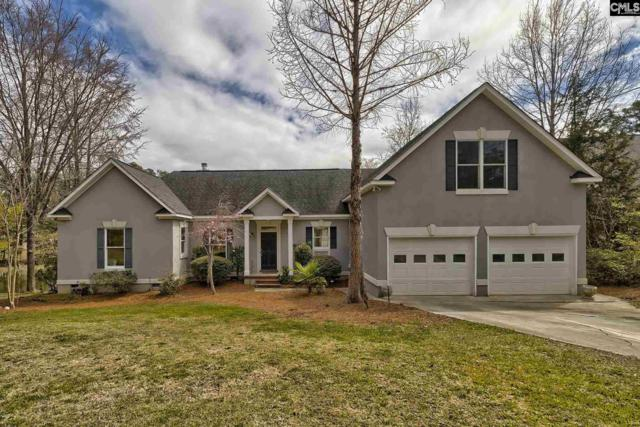 203 Buddy Eargle Road, Chapin, SC 29036 (MLS #467444) :: The Olivia Cooley Group at Keller Williams Realty