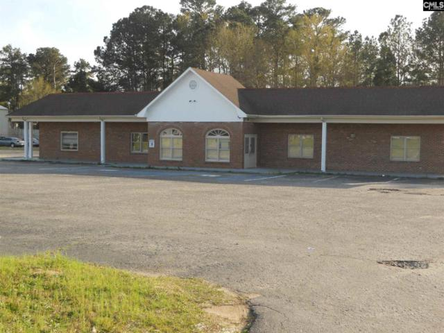 3005 Broad River Road, Columbia, SC 29210 (MLS #467486) :: The Olivia Cooley Group at Keller Williams Realty