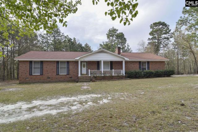 650 Whippoorwill Drive, Lexington, SC 29073 (MLS #467538) :: The Olivia Cooley Group at Keller Williams Realty