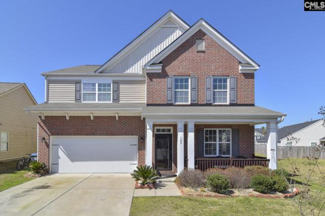 149 Pennsylvania Court, Chapin, SC 29036 (MLS #467574) :: EXIT Real Estate Consultants