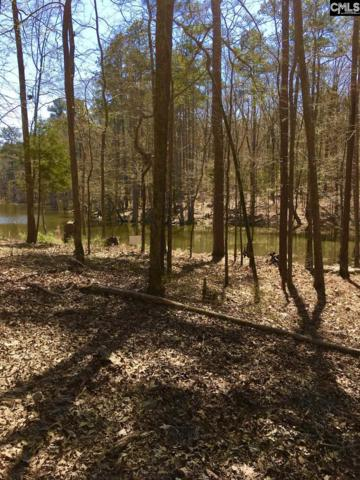 120 Serenity Pointe Lot #38, Leesville, SC 29070 (MLS #467662) :: EXIT Real Estate Consultants