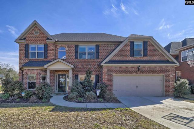 636 Village Market Drive, Chapin, SC 29036 (MLS #467723) :: EXIT Real Estate Consultants