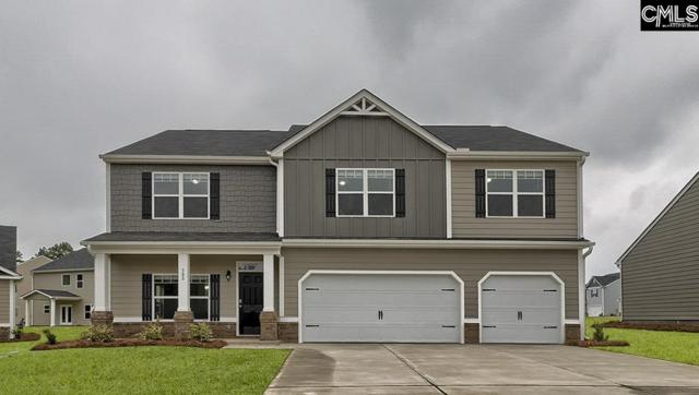 308 Sandy Shoals Court, Lexington, SC 29072 (MLS #467745) :: Home Advantage Realty, LLC