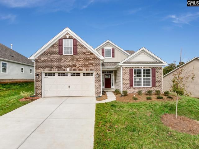 762 Carolina Aster Drive, Blythewood, SC 29016 (MLS #468020) :: EXIT Real Estate Consultants