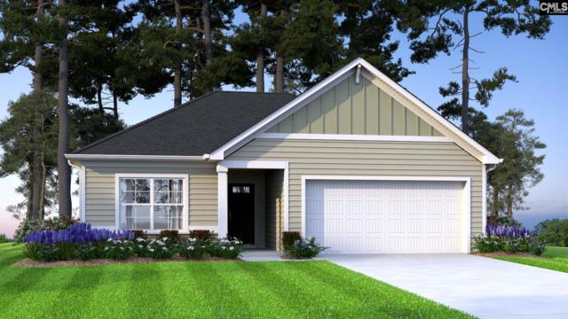 145 Plum Orchard Drive, West Columbia, SC 29170 (MLS #468049) :: EXIT Real Estate Consultants