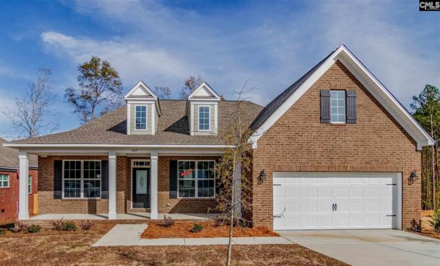 269 Cedar Hollow Lane, Irmo, SC 29063 (MLS #468323) :: Home Advantage Realty, LLC