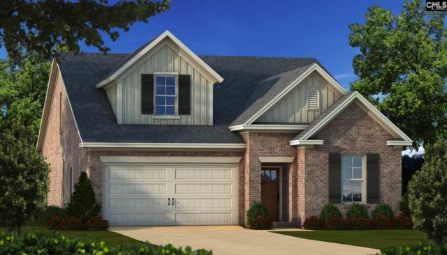 114 Emerald View Court, Lexington, SC 29072 (MLS #468578) :: EXIT Real Estate Consultants
