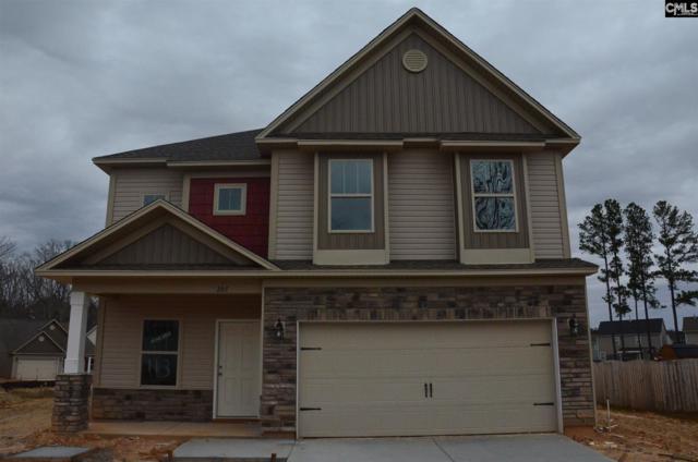 207 Ventnor Avenue, Chapin, SC 29036 (MLS #468586) :: EXIT Real Estate Consultants