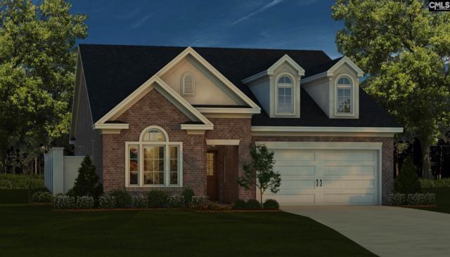110 Emerald View Court, Lexington, SC 29072 (MLS #468587) :: EXIT Real Estate Consultants