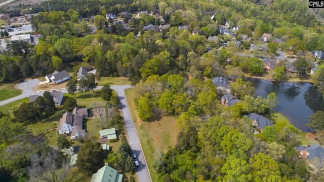 321 Redstone Way #10, Columbia, SC 22921 (MLS #468809) :: EXIT Real Estate Consultants