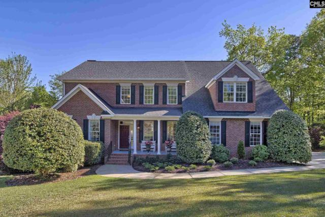 201 Lochweed Court, Columbia, SC 29212 (MLS #468898) :: EXIT Real Estate Consultants
