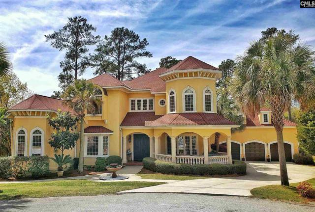 505 Camelia Key Lane, Chapin, SC 29036 (MLS #468900) :: EXIT Real Estate Consultants