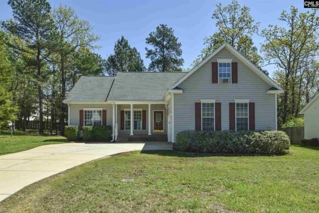137 Shipyard Blvd, Chapin, SC 29036 (MLS #468956) :: EXIT Real Estate Consultants