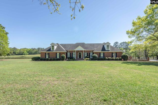 370 Zion Hopewell Road, Gilbert, SC 29054 (MLS #468973) :: EXIT Real Estate Consultants