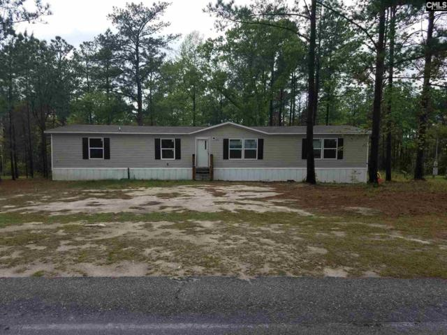 216 Boiling Springs Lane, Lexington, SC 29073 (MLS #468997) :: The Olivia Cooley Group at Keller Williams Realty