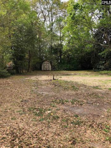 717 Spring Street, Orangeburg, SC 29115 (MLS #469003) :: EXIT Real Estate Consultants