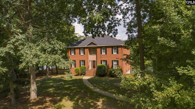 132 Red Fox Trail, Chapin, SC 29036 (MLS #469051) :: EXIT Real Estate Consultants