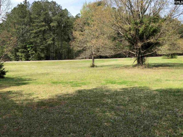 349 Old Shealy Road, Chapin, SC 29036 (MLS #469114) :: EXIT Real Estate Consultants