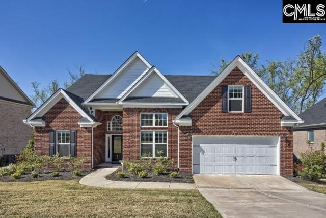 201 Shimano Court, Lexington, SC 29072 (MLS #469148) :: The Olivia Cooley Group at Keller Williams Realty