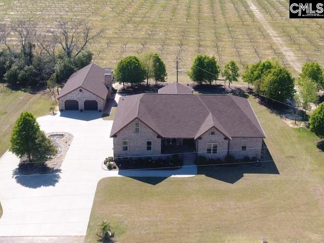 155 Oneal Shealy Rd, Gilbert, SC 29054 (MLS #469199) :: EXIT Real Estate Consultants