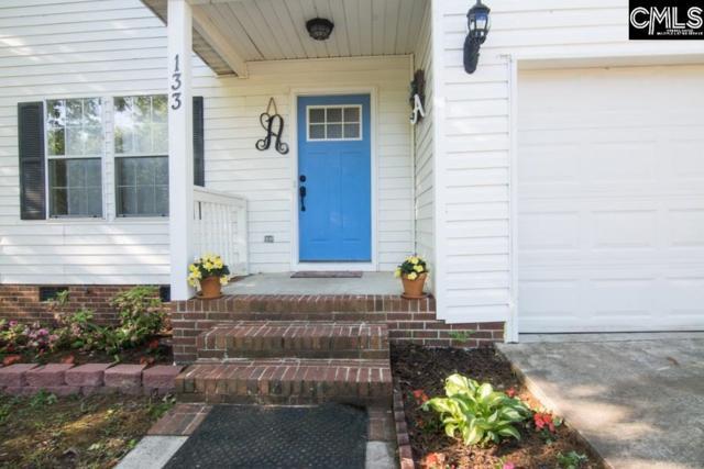 133 Firebridge Drive, Chapin, SC 29036 (MLS #469222) :: EXIT Real Estate Consultants
