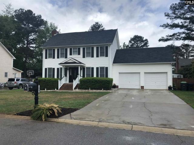 233 Tolson Lane, Columbia, SC 29212 (MLS #469225) :: The Olivia Cooley Group at Keller Williams Realty