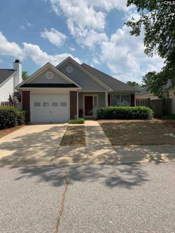 17 Autumn Run Way, Columbia, SC 29229 (MLS #469247) :: Home Advantage Realty, LLC