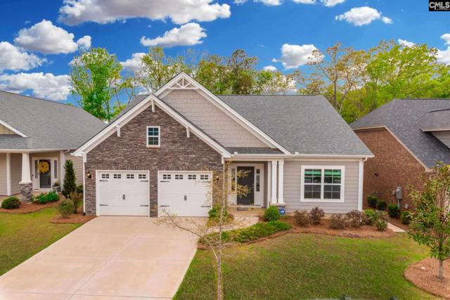 183 Lockleigh Lane, Chapin, SC 29036 (MLS #469251) :: EXIT Real Estate Consultants