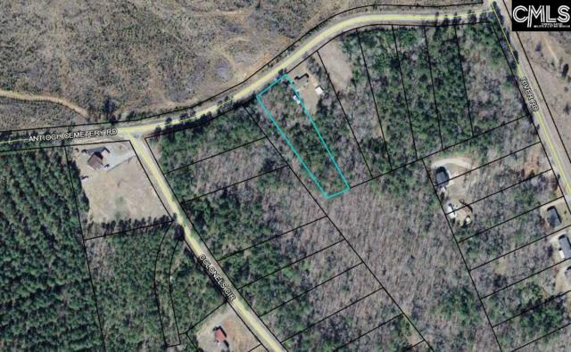 1584-1704 Antioch Cemetery Road Lot 31Ph1, Ridgeway, SC 29130 (MLS #469252) :: The Olivia Cooley Group at Keller Williams Realty