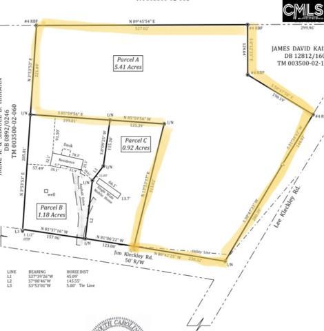 180 Jim Kleckley Road A, Lexington, SC 29072 (MLS #469253) :: Home Advantage Realty, LLC