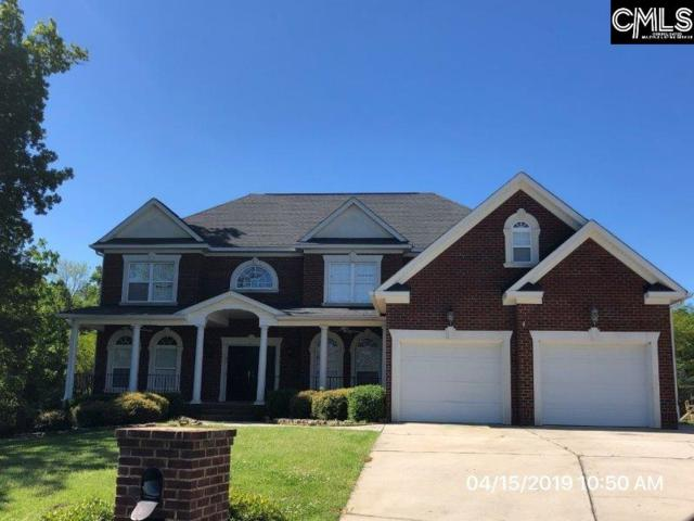 32 Clay Court, Chapin, SC 29036 (MLS #469254) :: EXIT Real Estate Consultants