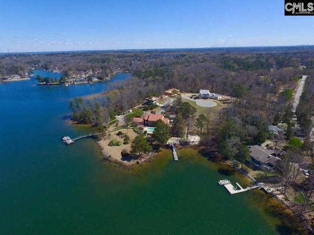 120 Laguna Vista Lot 4 Drive, Irmo, SC 29212 (MLS #469269) :: Home Advantage Realty, LLC