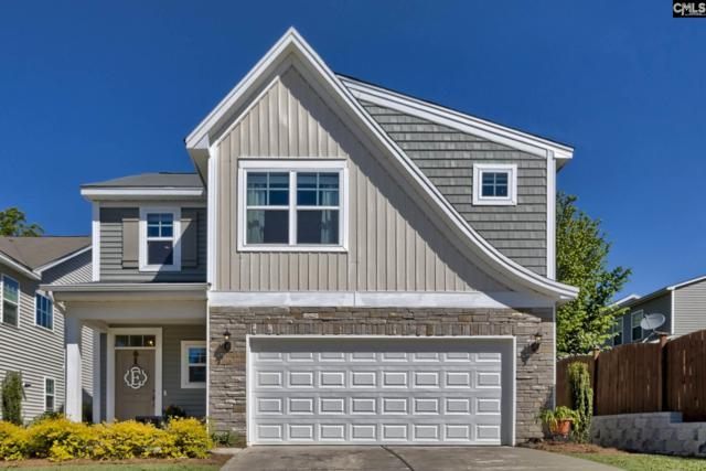 713 Helmsman Lane, Chapin, SC 29036 (MLS #469300) :: EXIT Real Estate Consultants
