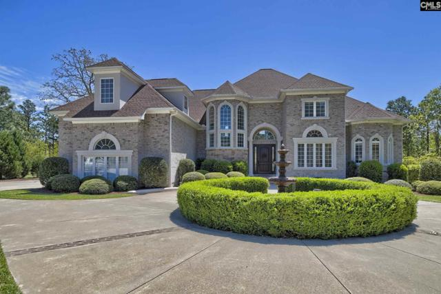74 Top Sail Court, Columbia, SC 29229 (MLS #469330) :: Home Advantage Realty, LLC