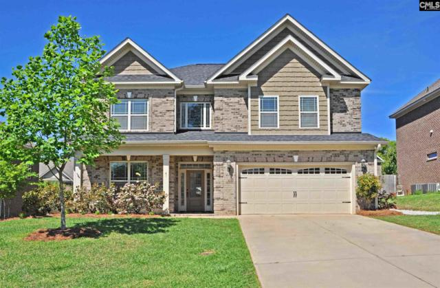 41 Bunchberry Court, Chapin, SC 29036 (MLS #469366) :: EXIT Real Estate Consultants