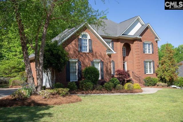 919 Seabrook Court, Lexington, SC 29072 (MLS #469421) :: Home Advantage Realty, LLC