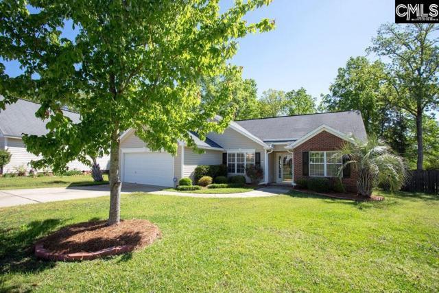 206 Blackstone Drive, Irmo, SC 29063 (MLS #469441) :: Home Advantage Realty, LLC