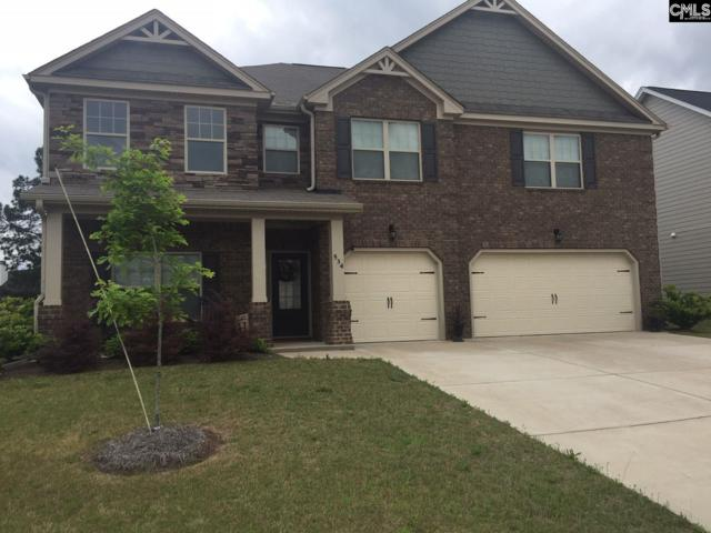 534 Meadow Grass Lane, Lexington, SC 29072 (MLS #469459) :: Home Advantage Realty, LLC