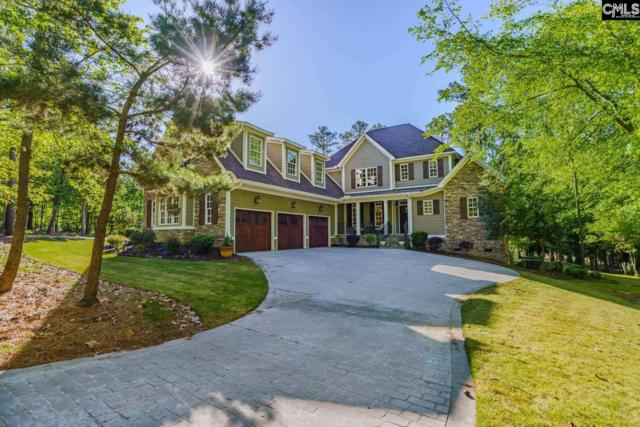 863 Willow Cove Road, Chapin, SC 29036 (MLS #469464) :: Home Advantage Realty, LLC