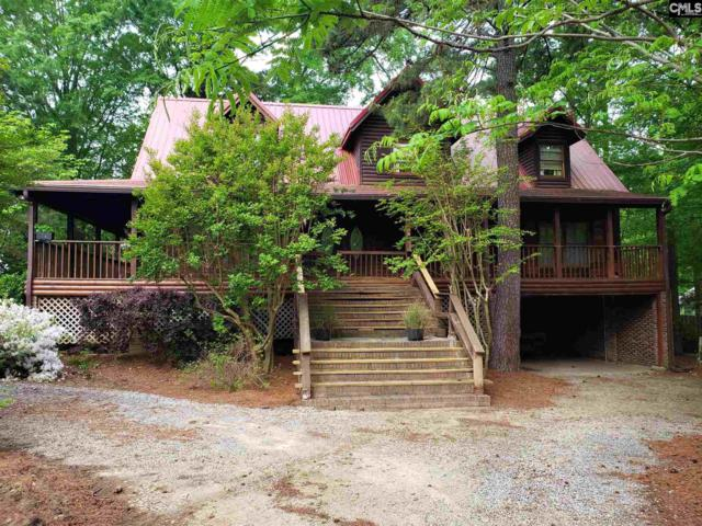 1001 Trillie Lane, Chapin, SC 29036 (MLS #469473) :: EXIT Real Estate Consultants