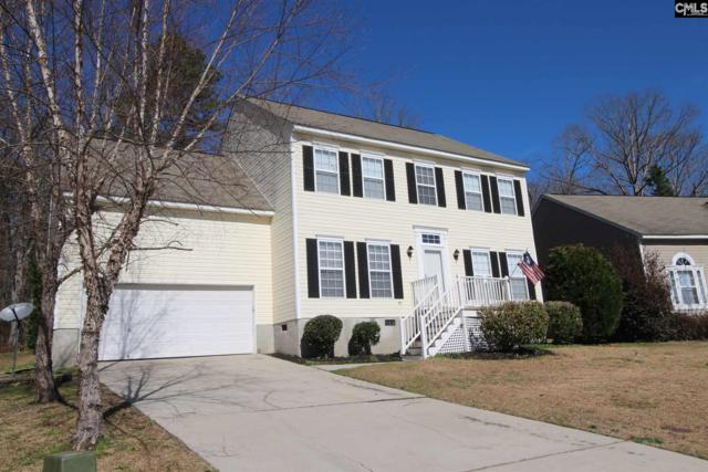 232 Walkbridge Way, Chapin, SC 29036 (MLS #469480) :: Home Advantage Realty, LLC