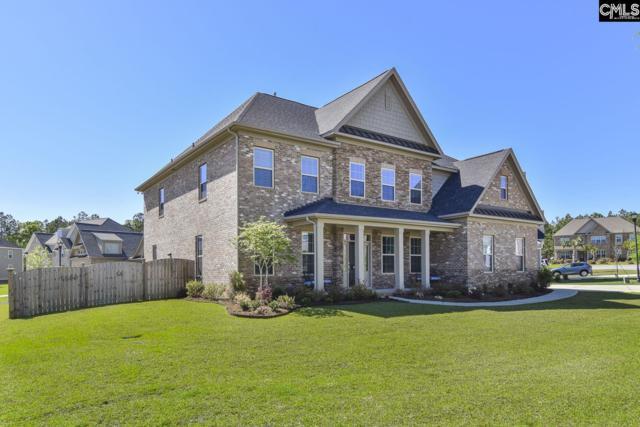 603 Riverdale Court, Chapin, SC 29036 (MLS #469578) :: Home Advantage Realty, LLC