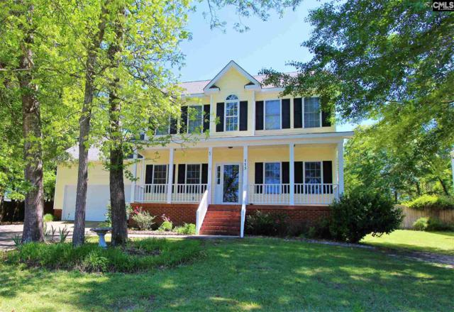 115 Painted Pony Court, Elgin, SC 29045 (MLS #469638) :: The Meade Team