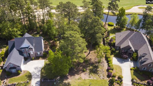 9 Beaver Lake Ct, Elgin, SC 29045 (MLS #469723) :: Home Advantage Realty, LLC