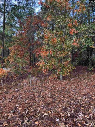 154 Baysdale, Columbia, SC 29229 (MLS #469729) :: Loveless & Yarborough Real Estate